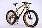 MYTNN Fatbike 26 Zoll 21 Gang Shimano Fat Tyre Mountainbike Gold 47 cm RH Snow Bike Fat Bike (Gold/Gold)