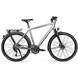 Univega Herren Geo 6.0 Fahrrad, chromosilver matt, 60