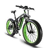 Extrbici XF800, E-Bike,1000W, 48V, 13Ah, Xf800, grün