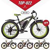 RICHBIT eBike RLH-022, E-Bike, 1000 W, 48 V, 17 AH,Grün