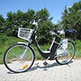 Elektro Fahrrad City Bike E-Bike 36V Elektroantrieb 250W Elektrobike schwarz